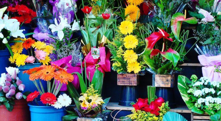 come arredare un negozio di fiori